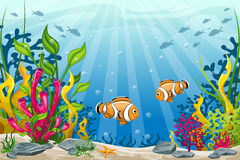 Underwater landscape with clownfish Stock Photo