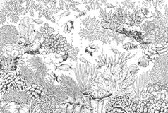 Underwater Landscape with Corals and Fishes. Hand drawn underwater natural elements. Sketch of reef corals and swimming fishes.  Monochrome horizontal Stock Photo