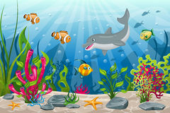 Underwater landscape with dolphin and fish Stock Images