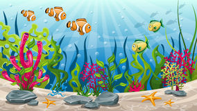 Underwater landscape with fish and stones Royalty Free Stock Image