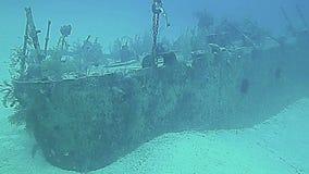 Underwater landscape in Grand Cayman stock video