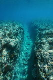 Underwater landscape natural trench into the reef Royalty Free Stock Photography