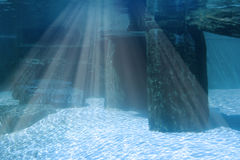 Underwater landscape with rocks. Underwater seascape with rocks and light shining Royalty Free Stock Images