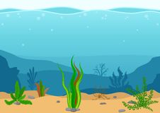 Underwater landscape with seaweeds. Seascape with reef. Marine sea bottom silhouette with seaweed. Nature Scene in flat. Cartoon style. Vector illustration Stock Photos