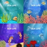 Underwater Landscape Set Stock Images