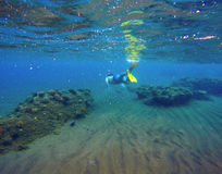 Underwater landscape with snorkeling man and coral reef. Sea bottom with sand and seaweeds Royalty Free Stock Images