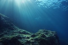 Underwater landscape with sunrays