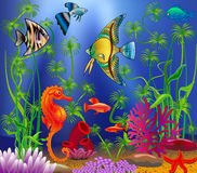 Underwater landscape with various water plants. And swimming tropical fish Royalty Free Stock Photos