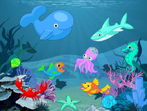 Underwater life. Illustration background of an underwater life Stock Photos