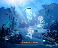 Underwater Life Background Light Poster. Underwater world sea life poster with transparent colorful jellyfishes coral reef sun rays misty blue background vector Stock Image