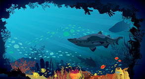 Underwater life - Coral reef with sharks and fish. Underwater life - Coral reef with fish and big sharks on a blue sea background Stock Photo