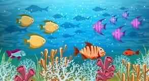 Underwater life panorama royalty free illustration