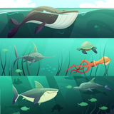 Underwater Life  Retro Cartoon Banners Set Stock Photos