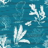Underwater world. Seamless  pattern with algae and fishes. Underwater life. Seamless background with algae and fishes Royalty Free Stock Photo