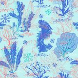 Seamless pattern with underwater plants. Bright sea  illustration. Underwater life. Seamless background with algae Stock Photos