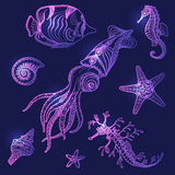 Underwater Life Set. Hand drawn underwater life set. Shells, starfish, seahorses, fish and  squid on dark blue background Royalty Free Stock Photography