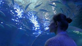 Woman looking at fish vortex in large public aquarium tank at oceanarium stock video