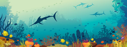 Underwater marine life - coral reef and marlin fish. Vector illustration with coral reef, school of fish and silhouette of marlin fish on a blue sea background Royalty Free Stock Images