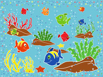 Underwater marine life. Fishes, coral, starfish and seaweed on the seabed. Hand drawing vector illustration Royalty Free Stock Photography