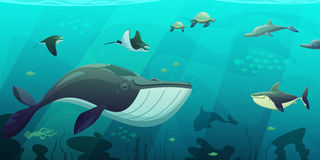Underwater Marine Ocean Life Abstract Banner. Underwater ocean live aquamarine flat abstract banner with shark squid fish turtles and seaweeds flat vector Royalty Free Stock Photography