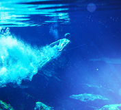 Underwater Stock Photos
