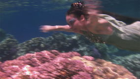 Underwater model free diver in fairy costume on background of corals in Red Sea. stock video footage