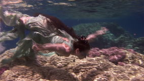 Underwater model free diver swims in clean transparent blue water in Red Sea. stock footage