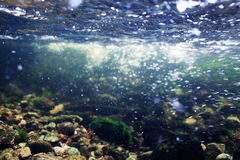Underwater in  mountain river Royalty Free Stock Image