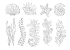 Underwater Nature Set Adult Zentangle Coloring Book Illustration Royalty Free Stock Image