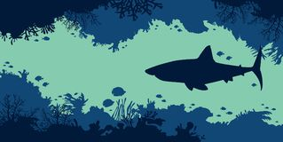 Underwater nature - shark, fish, coral, cave, sea. Royalty Free Stock Photography