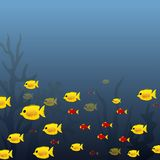 Underwater ocean scene of yellow and red fish Stock Photos