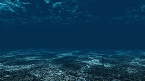 Underwater, ocean surface and bottom stock video footage