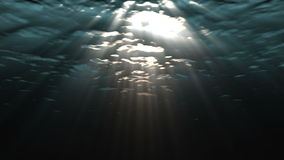 Underwater ocean waves. Looping animation of ocean waves from underwater. Light rays shining through. Great for backgrounds stock video