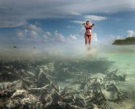 Underwater photo of environment of island Stock Photos