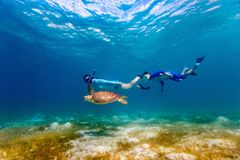Family snorkeling with sea turtle. Underwater photo of family mother and son snorkeling and swimming with Hawksbill sea turtle stock image