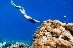 Woman snorkeling. Underwater photo of woman snorkeling and free diving in a clear tropical water at coral reef Royalty Free Stock Photography