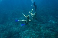 Underwater photo of young friends in bikinis diving. In ocean royalty free stock photography