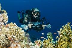 Underwater photographer Stock Photos