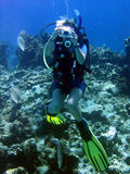 Underwater photographer. A diver girl talking pictures underwater Royalty Free Stock Photography