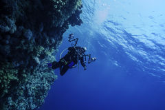 Underwater Photographer at a Reef in Egypt royalty free stock photography