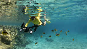 Underwater photographer snorkeling Royalty Free Stock Image