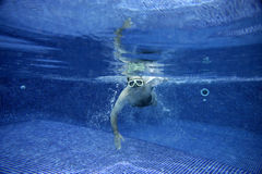 Underwater picture stock photography
