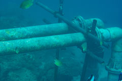 Underwater pipes in the indian ocean Stock Photos
