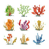 Underwater plants in cartoon vector style. Ocean life, underwater sea, nature seaweed illustration Royalty Free Stock Photos