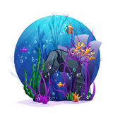Underwater rocks with seaweed and fish fun Royalty Free Stock Photography