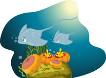 Underwater scene Royalty Free Stock Photography