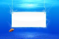 Underwater Scene. Crear blue underwater scene, white banner Royalty Free Stock Image