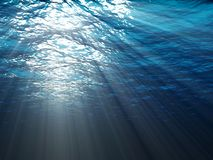 An underwater scene Royalty Free Stock Photos