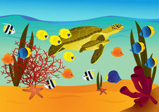 Underwater scene with cartoon turtles. And fishes. eps 10 vector illustration Royalty Free Stock Photo