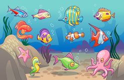 Underwater scene. Cute sea tropical fishes ocean underwater animals. Undersea bottom with corals seaweeds kids concept. Underwater scene. Cute sea tropical vector illustration
